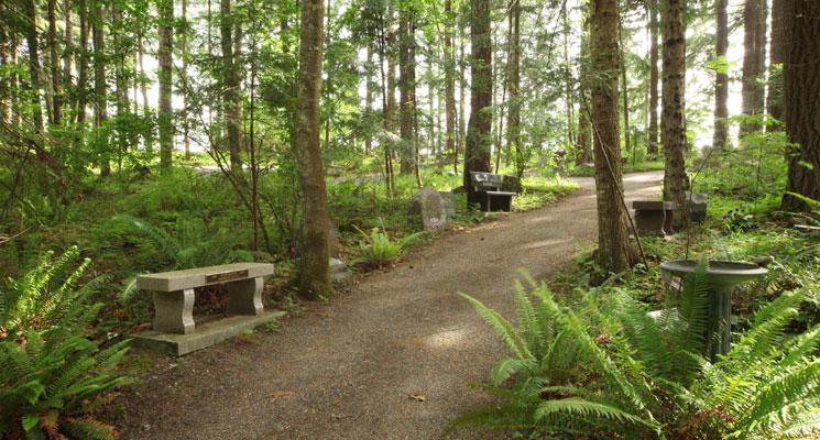 Nature Walks Provide A Beautiful Outdoor Memorial