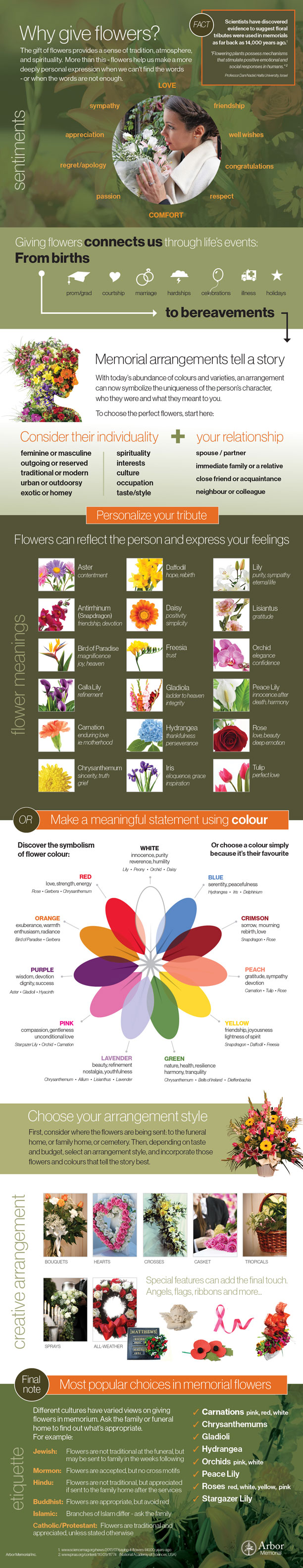 The meaning of flowers arbor memorial inc blog infographic the meaning of flowers izmirmasajfo