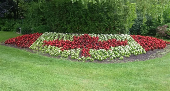 Mount Lawn Funeral Home & Cemetery, Canada 150 flower bed