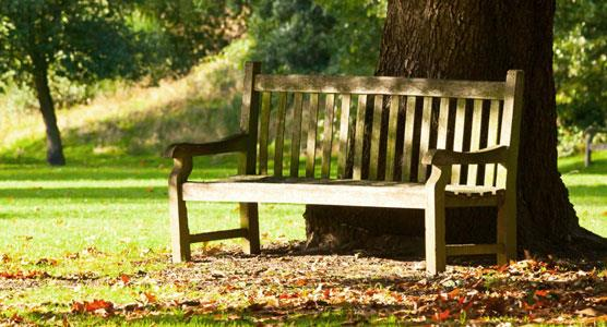 Image of park bench linking to the Cemetery section